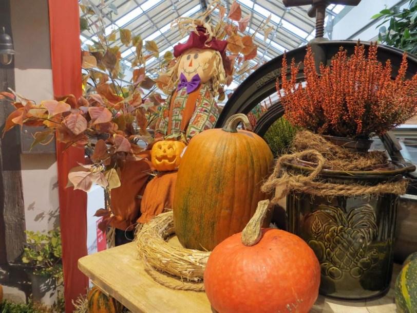 Herbstdeko im Marktplatzcenter in Neubrandenburg