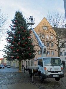 Webertanne in Neubrandenburg wird abgeschmückt