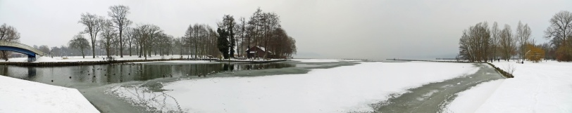 Panorama - Winterlicher Tollensesee in Neubrandenburg