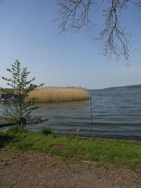 Tollensesee in Neubrandenburg