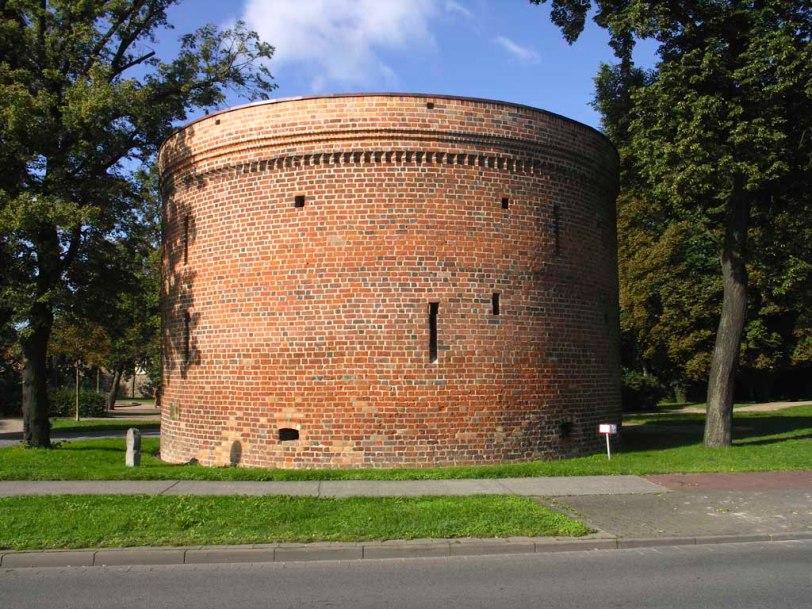 Zingel vor dem Friedländer Tor in Neubrandenburg