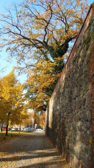 Stadtmauer in Neubrandenburg